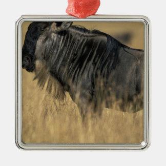 Kenya, Masai Mara Game Reserve, Wildebeest Silver-Colored Square Decoration