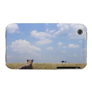Kenya, Masai Mara iPhone 3 Covers
