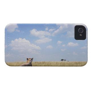 Kenya, Masai Mara iPhone 4 Case