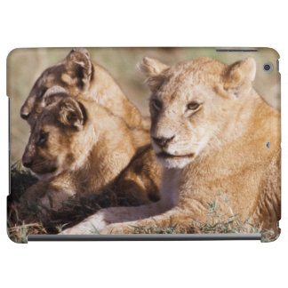 Kenya, Masai Mara, Lion Cubs