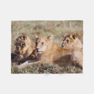 Kenya, Masai Mara, Lion Cubs Fleece Blanket