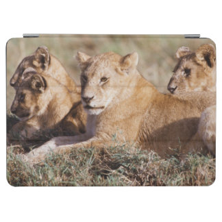 Kenya, Masai Mara, Lion Cubs iPad Air Cover