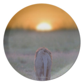 Kenya, Masai Mara Plate