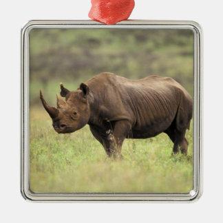 Kenya, Nairobi National Park. Black Rhinoceros Christmas Ornament