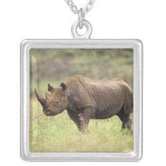 Kenya, Nairobi National Park. Black Rhinoceros Silver Plated Necklace