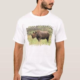 Kenya, Nairobi National Park. Black Rhinoceros T-Shirt