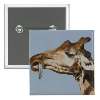 Kenya, Nakuru National Park. Rothschild's 15 Cm Square Badge