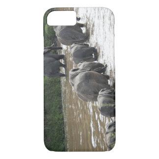 Kenya, No Water No Life Mara River Expedition, 2 iPhone 8/7 Case
