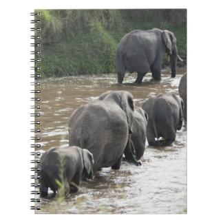 Kenya, No Water No Life Mara River Expedition, 2 Spiral Notebook