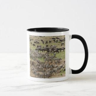 Kenya, No Water No Life Mara River Expedition, 5 Mug