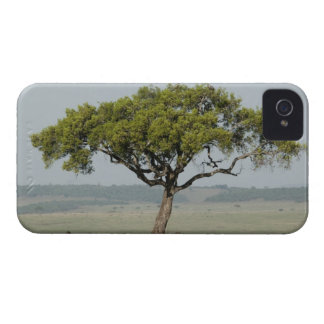 Kenya, No Water No Life Mara River Expedition, iPhone 4 Case-Mate Cases