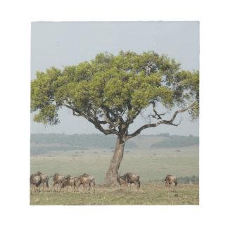 Kenya, No Water No Life Mara River Expedition, Notepad