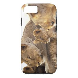 Kenya, Samburu National Game Reserve. Lion cub 2 iPhone 8/7 Case