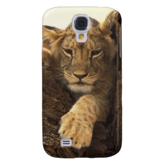 Kenya, Samburu National Game Reserve. Lion cub Galaxy S4 Case