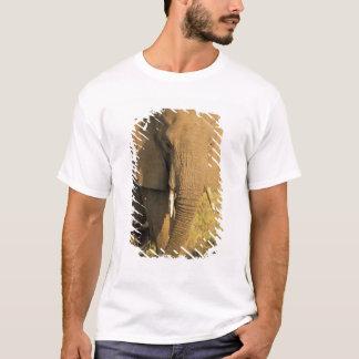 Kenya, Samburu National Reserve. African T-Shirt