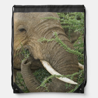 Kenya, Samburu National Reserve. Close-up of Drawstring Bag