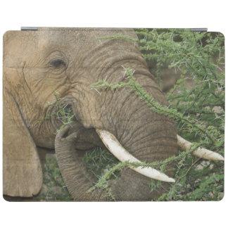 Kenya, Samburu National Reserve. Close-up of iPad Cover