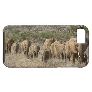 Kenya, Samburu National Reserve. Elephants iPhone 5 Case