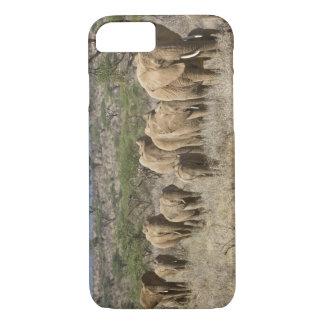 Kenya, Samburu National Reserve. Elephants iPhone 8/7 Case