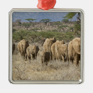 Kenya, Samburu National Reserve. Elephants Silver-Colored Square Decoration