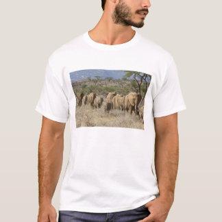 Kenya, Samburu National Reserve. Elephants T-Shirt
