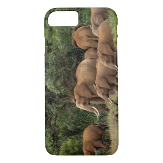 Kenya: Tsavo East National Park, herd African iPhone 8/7 Case