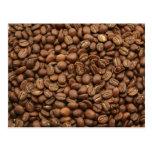 Kenyan Coffee Beans Postcard