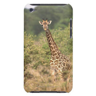Kenyan giraffe barely there iPod cases