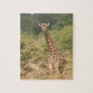 Kenyan giraffe jigsaw puzzles