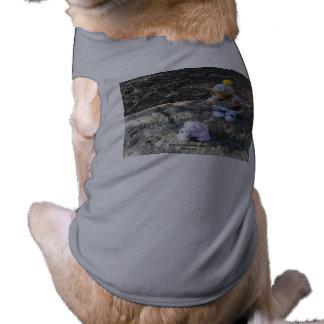 Ker'Dunkedunk and deeOHgee go for a walk! Shirt