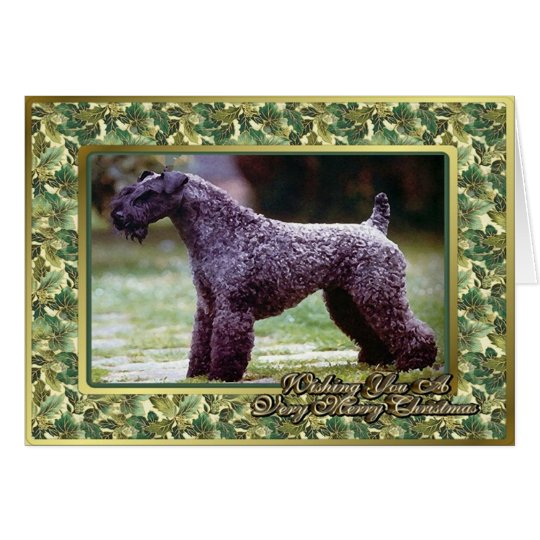 Kerry Blue Terrier Dog Blank Christmas Card