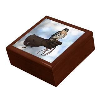 Kestrel on Glove Illustration Gift Box