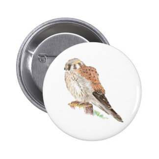 Kestrel Sparrow Hawk, Watercolor Bird 6 Cm Round Badge