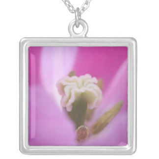 Keukenhof Gardens, Holland, specializes in 3 Square Pendant Necklace