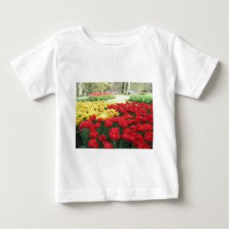 keukenhof spring gardens floral display, Holland Baby T-Shirt