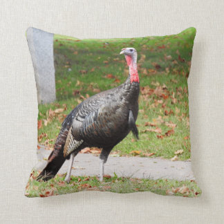 Kevin The Turkey - Old Wethersfield , CT (2 Sides) Cushion