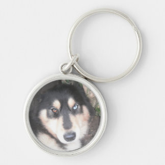 Key Chain Husky One Blue Eye One Brown Eye