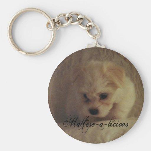 Key Chain - Maltese-a-licious