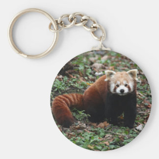 Key chain - red panda 2