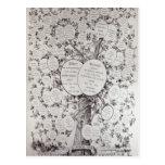 Key to Genealogical Tree Postcard