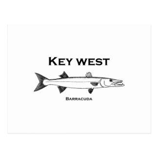 Key West Barracuda Postcard
