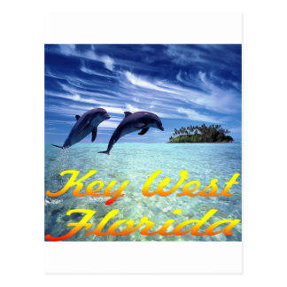 Key West Florida Dolphins Postcard