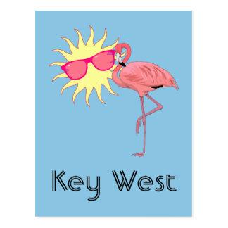 Key West Florida Pink Flamingo Humor Postcard