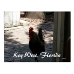 Key West, Florida Post Cards