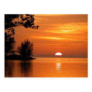 Key West Florida Sunset Postcard
