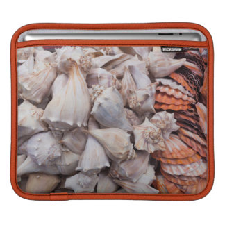 Key West, seashells iPad Sleeve
