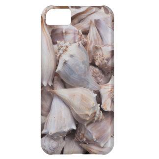 Key West, seashells iPhone 5C Case