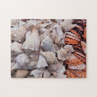 Key West, seashells Jigsaw Puzzle