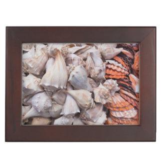 Key West, seashells Keepsake Box