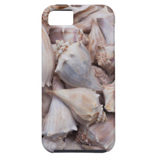 Key West, seashells Tough iPhone 5 Case